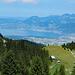 "Kurz vor der Alp ""Chalets de Dreveneuse""."