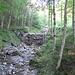 sehr angenehmer Wanderweg entlang des Dürrenbachs bis zum Abzweig Badhus