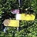 <b>Stabio Monticello (371 m).<br />Pedalo velocemente per allontanarmi dalla puzza dei distributori di benzina e alla prima rotonda, in località Stabio Monticello (371 m) passo sul versante opposto rispetto alla strada cantonale. </b>