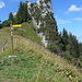 Wänifurggel 1610 m - am Bildrand rechts gab es eine klare Spur durchs hohe Gras - der Nordweg zum Brüggler oder nur die Fußspuren von Wanderern, die nach dem Weg suchten?