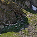 Schafe suchen Schatten in den Felsen
