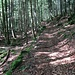 Das ist nun nicht mehr ein offizieller Wanderweg. In angenehmer Steigung geht's den Schofgraben hinauf. Gegen oben hin wirds etwas steiler.