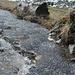 Eisiger Froschlaich im Val Russein
