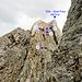 <b>Bild 17.</b> Wiederaufstieg von der Fessscharte zum Chli / Guet Fess.<br /><br />Rot = Fixseil<br /><br />1) ausgesetzte Felsstufe (2-3 m, frei geklettert II)<br />2) leicht abdrängendes Eck<br />3) Felsnische mit Normalhaken<br />4) unteres Ende des Fixseils<br /><br />Zwischen 3) und 4) die brüchige Rinne, die am oberen und unteren Ende Kletterstellen bereithält (frei II).