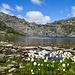 Lago di Dentro 2506 m
