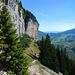 Unterhalb von eindrucksvollen Steilwänden leitet der Wanderweg zur Wegverzweigung bei Füessler