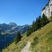Danach geht's hinüber zu den Bergmähdern von Weesen.