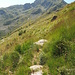 Sentiero verso la mulattiera per il Rifugio Rosazza