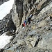 der Übergang vom Bietschgletscher auf den NE-Grat des Wilerhorns