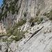 auch im Canyon wird mit Stangen gesichert