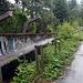 Erinnerung an die olympischen Winterspiele 1984: Die Bob-Bahn. Sie wurde im Bosnienkrieg als Stellung gegen Sarajevo benutzt, und es ist bis heute noch nicht entschieden, was mit ihr gemacht werden soll.