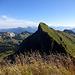 Tierberg - ein mustergültiger Voralpen-Gipfel