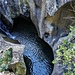 Erosioni sul torrente Caronno