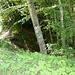 ... der Fritzeflue und -Tunnel