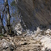 der Felsenweg durch die Flue
