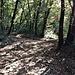 Il sentiero che sale al Parco Archeologico.