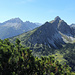 Litnisschrofen vom Alpenrosensteig gesehen