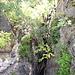 La photo restitue mal la hauteur du gouffre qui doit avoisiner les 30 mètres.