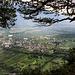 Super Trail vom Sagankopf runter