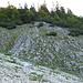 der Einstieg in die Latschengasse, hier wäre ein Steinmann wirklich sinnvoll, heute durch deutliche Spuren im Geröll trotzdem gut zu finden