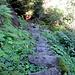 steiler Steinplattenweg