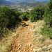 Sentier difficile, bricht am Ende steil ab