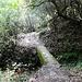 Wanderweg in die Gorges Saint-Jaumes