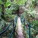 Gorges Saint-Jaumes