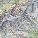 Heute ohne GPS, deshalb hier die ungefähre Route gezeichnet als Überblick