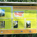bei diesem Info-Schild über das Sonderwaldreservat bin ich vom Velo auf die Füsse gewechselt. Leider bekam ich wieder mal kein Auerhuhn zu Gesicht - ich Trampel hab in Natura noch nie eins gefunden...