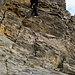 im Abstieg beim Felsband: ganz links sind die Briefkastengriffe