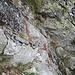 passaggio attrezzato visto dall'alto (cordino metallico e staffe)
