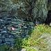 … i resti dell'Alpe Scerscen, abbandonata per il troppo freddo ad inizio '800
