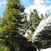große Felsblöcke auf der Kammhöhe