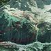 Anello del Lago Pirola: la traccia.