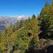 Erstes Lärchengold macht sich in den oberen Höhen des Wallis bemerkbar