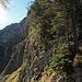 ab hier geht es rechts vom Grat, steil einen Wiesenhang hinauf in Richtung dem Alpkopf. ca. T4 mit einer ausgesetzten Stelle
