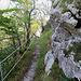 Der Wanderweg auf dem Ravellen ist sehr gut begehbar.