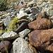 Verschiedenartigste Steine laden zum Einsammeln ein
