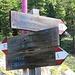 Auf einer Lichtung teilen sich sodann die Wege: nach rechts führt mein Steig Nr. 23 heute zum Zirmbichl.