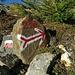 An dieser Stelle erreicht Steig Nr. 23B (der Weg durch die Hintersaugbergalpe) wieder den Verbindungs-Steig Nr. 23 zwischen Göflaner Scharte und Zirmbichl.