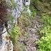 Kurze Stelle mit Drahtseil, da der Fels etwas glitschig ist, geht das auch so in Ordnung