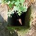Vidimské lávky, Kamin einer 10-15 m tiefer liegenden Felsenbehausung