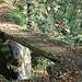 Vidimské lávky, Brücke 1