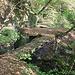 Vidimské lávky, Brücken 1-2