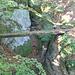 Vidimské lávky, Brücke 11