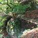 Vidimské lávky, Brücken 15-16