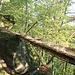 Vidimské lávky, Brücke 19