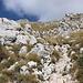 Im Aufstieg zum Monte Terminillo - Nach wie vor folgen wir der rot-weißen Markierung.