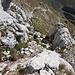 Im Aufstieg zum Monte Terminillo - Rückblick in die Rinne.